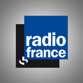 Miniature adt radio france