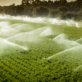 Eau agriculture istock 000019952631 small